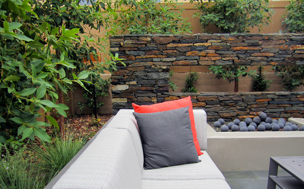 Bouquet Canyon ledger stone on floating wall. Tristania conferta trees for screening. Carolina cherry as background shrub. Black slate patio. Drought tolerant trees.