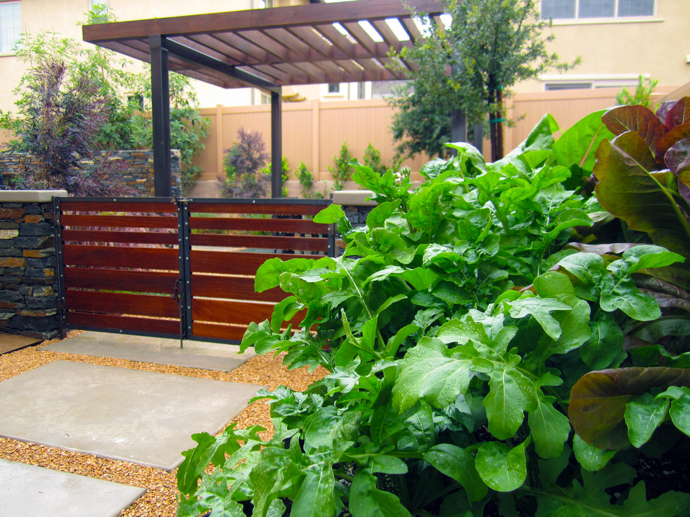 Raised vegetable garden trough with herbs and lettuce. Behind are two Ipe wood gates with raw steel framing transitioning to an outdoor dining area with patio cover.