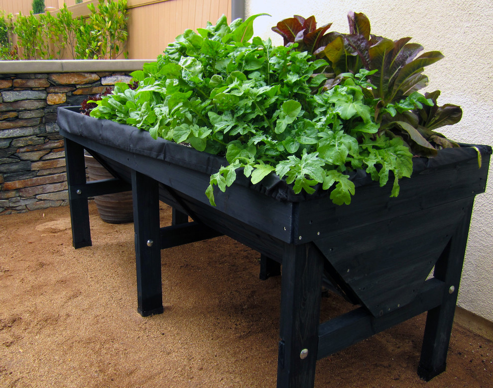 Veggie garden with raised planter trough. A great way to use a side yard!