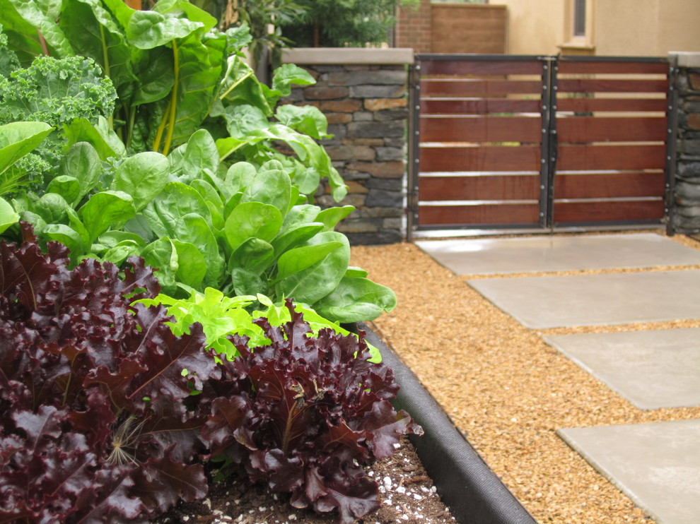 Side yard with raised trough for herbs and veggies. Modular concrete pads in decorative gravel transitioning through Ipe gates with raw steel framing.